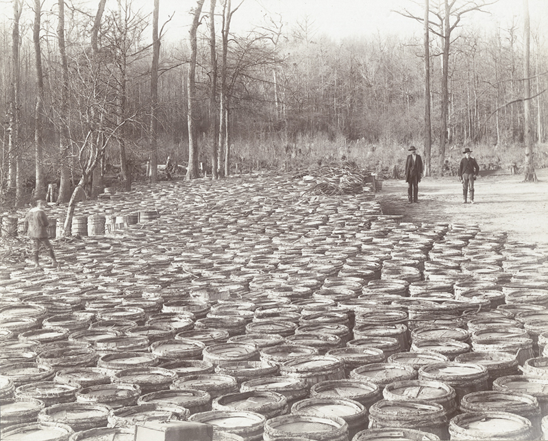 Barrels of Turpentine from the Round Timber Tract